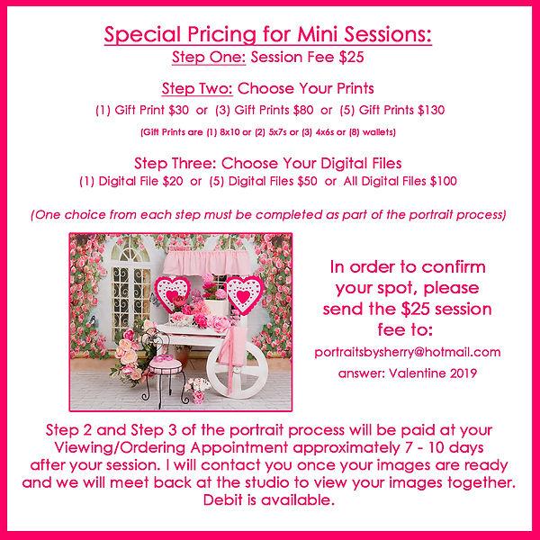 mini session pricing.jpg