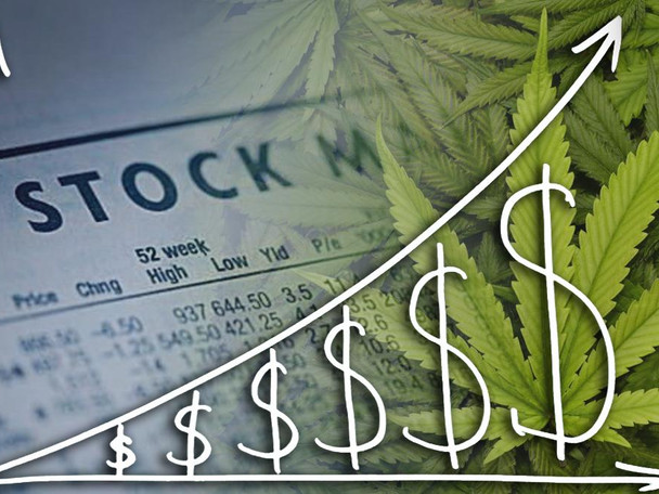 Will Marijuana Stocks Continue to Climb?