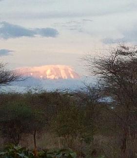 Uitzicht op de Kilimanjaro