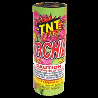 TNT TORCH