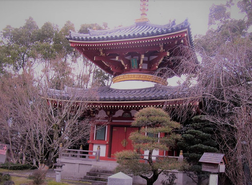 O Espírito dos Peregrinos de Shikoku