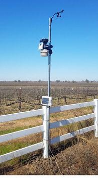 Crop Monitoring2.jpg