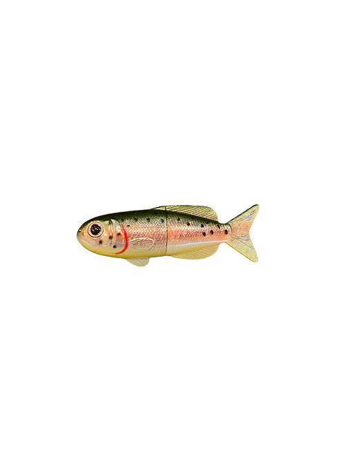 FISH MAGNET レインボートラウト