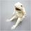Thumbnail: 鳥獣戯画 ぬいぐるみ