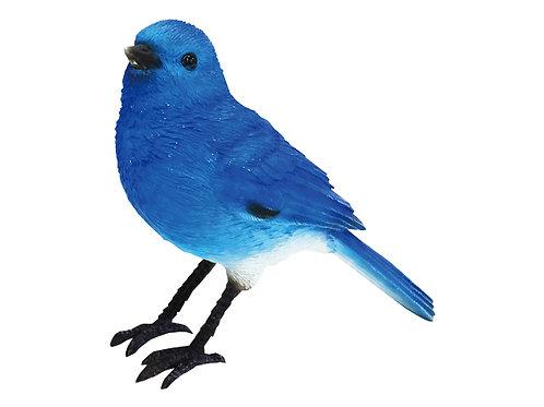 BIRDIE BILL