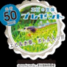 アセット 66_3x.png