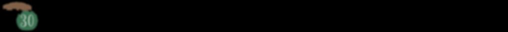 アセット 41_3x.png