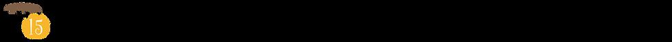 アセット 22_3x.png