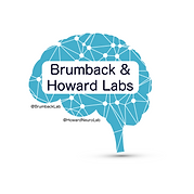 Brumback_and_Howard_Labs.png