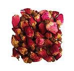 Бутоны роз.jpg
