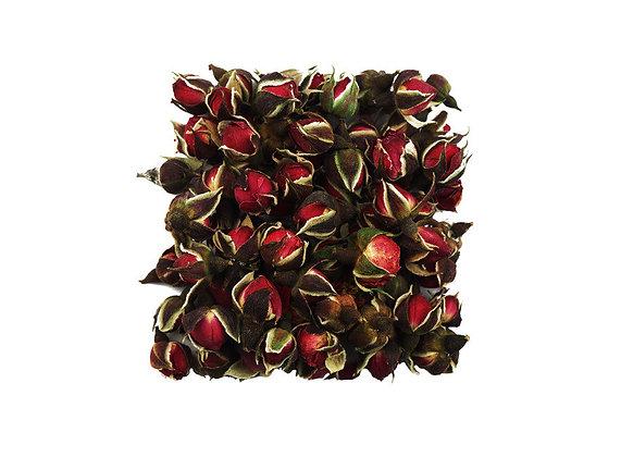 Роза юньнаньская (бутоны), 100 гр