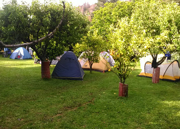 Tents in camp ground.jpg