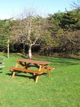 Camping tables.JPG