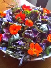 Miners garden salad.jpg