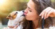 Dogs-licking-human-skin.jpg