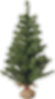 kerstboom1.png