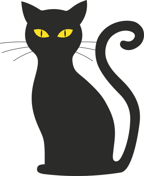 fille noire répandre la chatte