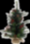 kerstboom3.png