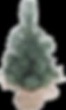 kerstboom2.png