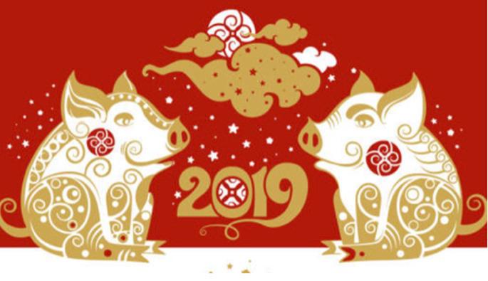 Nouvel an chinois - L'année du Cochon