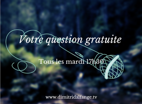 Replay voyance gratuite du 28 AVRIL 2020 - DimitridAlfange.tv