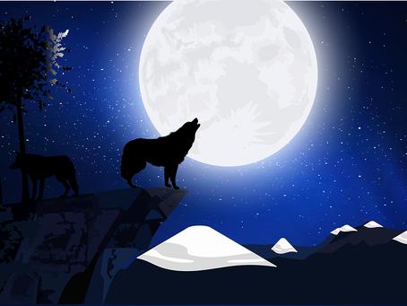 Nouvelle lune par Mahilie - Experts-Voyance