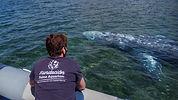 Debora Morrison Fundación Palma Aquarium