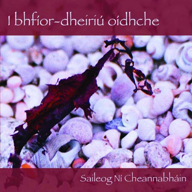 i bhfíor-dheiriú oídhche by Saileog Ní Cheannabháin
