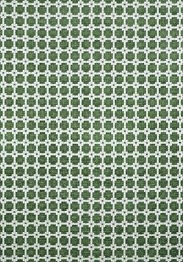 Thibaut Appolo Green.jpg