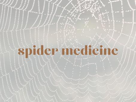 symbolism of the spider