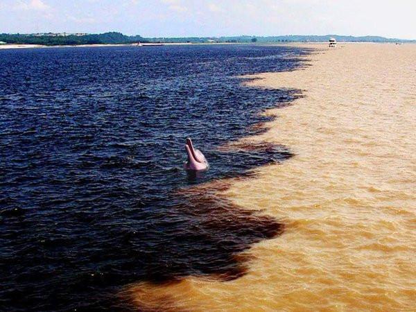 Foto do Encontro das Águas dos Rios Negro e Solimões