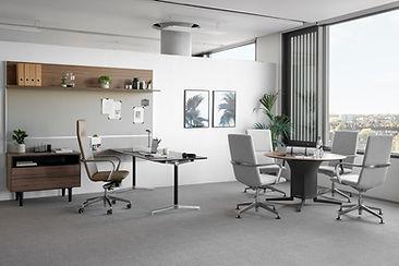 Executive Furniture.jpg
