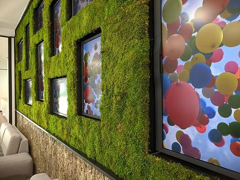 Eizo Moss Wall.jpg
