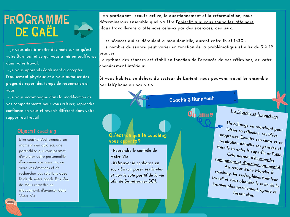 Programme de Gaël.png
