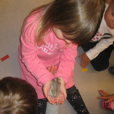 Notre hamster