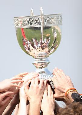 champions-1411861_1920 (1).jpg