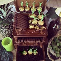 Sweet Havana treats for guests_ Chocolat