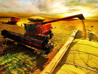 Produtividade no Campo: a receita para o crescimento