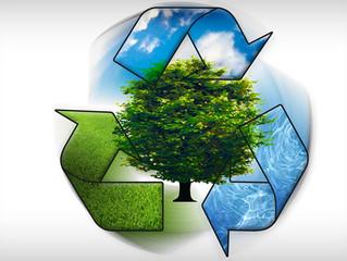 Incentivos à preservação e conservação ambiental em Minas Gerais