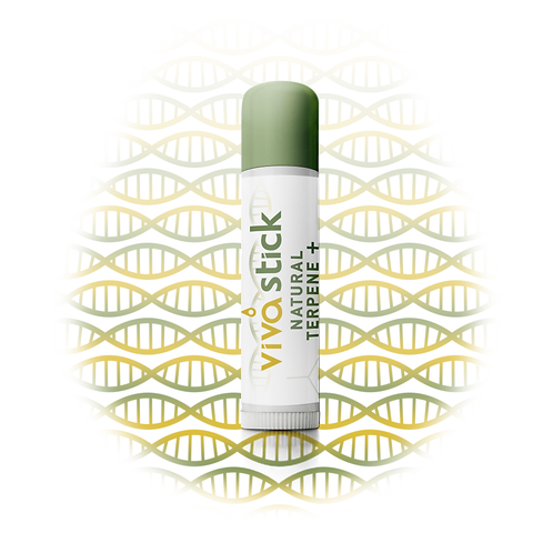 VivaStick Natural Terpene+ 25mg Lip Revival SPF 15