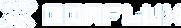 conflux logo - white.webp