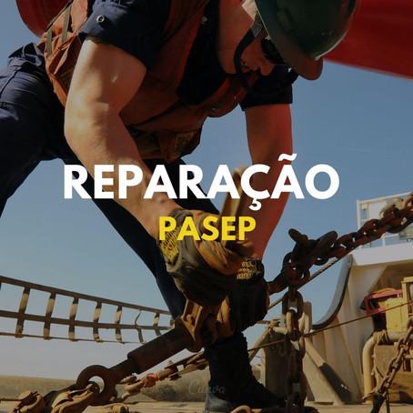 REVISÃO CONTA PASEP