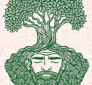 roots2_edited_edited.jpg