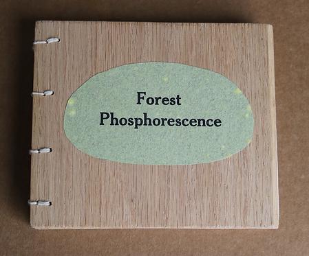 Forest Phosphorescence