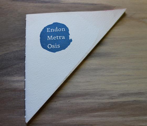 Endon cover 2.jpg