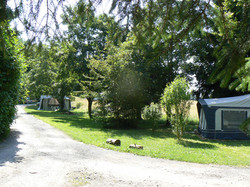 Tentes&caravaning allées