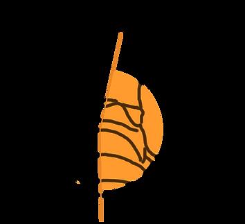 teste de pisada e tênis de corrida