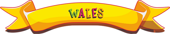 RIBBON WALES.png