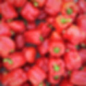 red%20bell%20pepper%20lot_edited.jpg