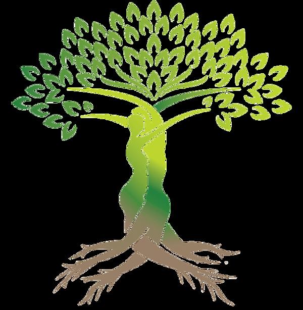 tree-of-life-11563498615hpqfhfldgl-1.png